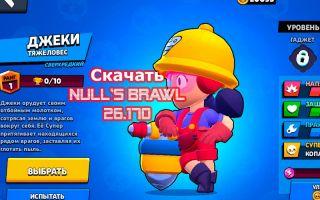 Скачать NULL'S BRAWL с Джеки